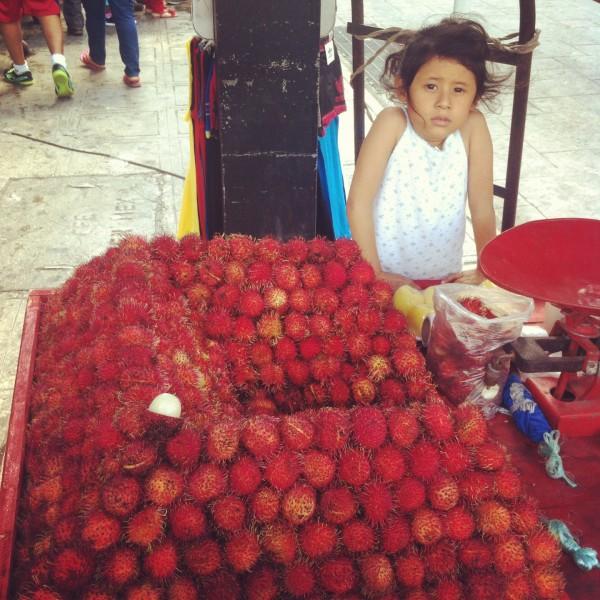 Köstliche Früchte des Lebens